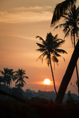 Sunrise over the backwaters in Kerala, India