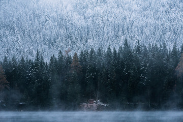 Cabin at Lake Eibsee with pine forest during early winter on a blue hour moody day, bavaria, Germany