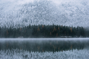 Reflection of pine trees in Lake Eibsee in winter