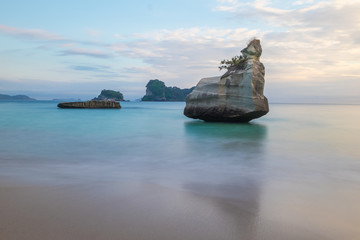 Foto auf Gartenposter Cathedral Cove New Zealand, Cathedral Cove Beach