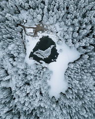 Pine Forest from above in winter with lake and cabins in Bavaria, Germany