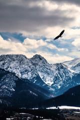 Wall Mural - Winter mountains panorama of Zakopane,  High Tatra Mountains, Poland
