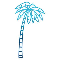 Tree palm isolated icon vector illustration graphic design