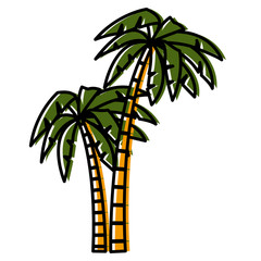 Tree palms isolated icon vector illustration graphic design