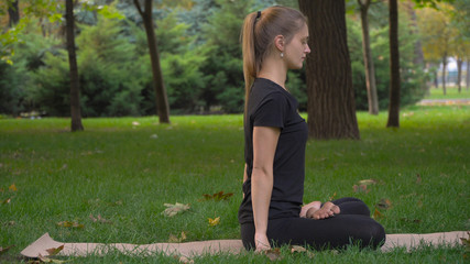 Young girl practicing yoga in the park on the green grass. Early autumn. In the grass are yellow leaves. The girl is young and healthy.