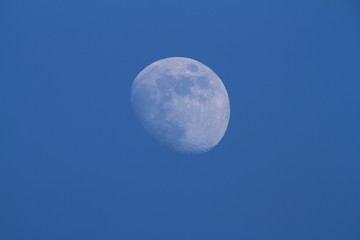 Moon on the blue sky.