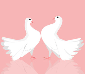 Illustration of  pair of white doves. Love. Vector illustration for your creativity