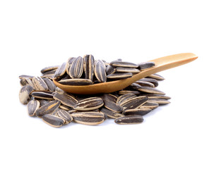 sunflower seeds pile against in wooden spoon  isolated on white background