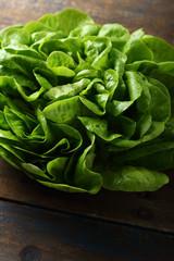Fresh lettuce on wood