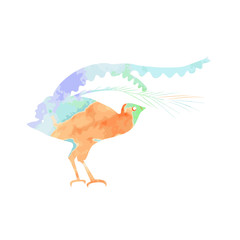 Lyrebird, or bird-lira silhouette with orange, blue and violet watercolor texture