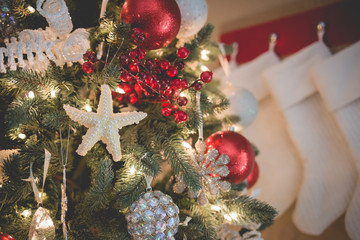 Florida themed Christmas tree with starfish ornament