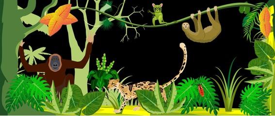 Horizontal vector illustration of wild tropical jungle, ocelot, orangutan, exotic animals and plants.