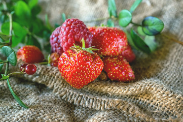 Ripe red strawberries and raspberries , lying on green leaf with drops of rain on the authentic substrate of woven fabric in the garden in a rustic style.