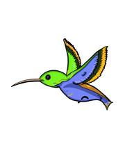 Hummingbird cartoon illustration drawing