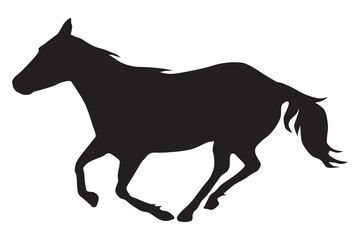 A horse is running in silhouette