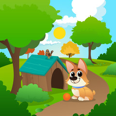 Smiling corgi sitting on path in park. Little bird on roof of dog s house. Playful pet with orange ball. Nature landscape with trees and green grass. Flat vector