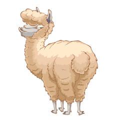 Alpaca.Vector illustration. Cartoon character