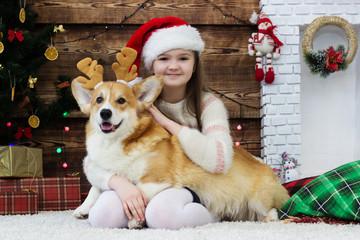 girl gently hugs a dog welsh corgi on the fluffy carpet