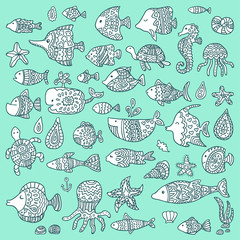 The collection of marine fish and mammals. Template for style design.