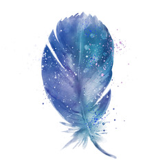 blue feather, watercolor effect