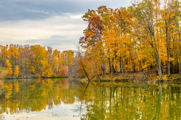 Red and gold leaves of fall are reflected in the waters of Worster Lake at Potato Creek State Park in North Liberty, Indiana