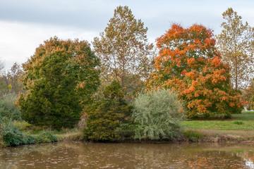 Missouri Fall Color