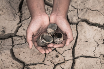 Hand of boy on cracked dry ground, Concept drought and crisis environment.