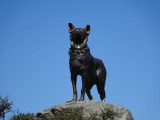 ニュージーランド、テカポ湖、牧羊犬の像