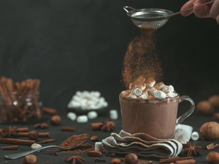 Hand sprinkled cinnamon powder on glass mug with hot chocolate cocoa drink. Copy space. Dark background. Low key. Winter food and drink concept.