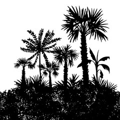 vector landscape with palm trees