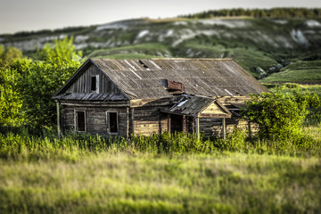 Old abandoned wooden house, overgrown grass on a bright sunny summer evening. Tilt-shift effect.