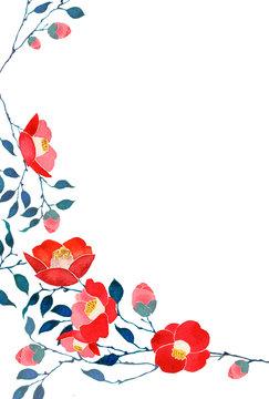 椿 背景 フレーム 寒中見舞い 水彩 イラスト