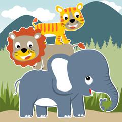 funny wildlife cartoon