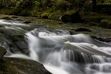Fluss im Dartmoor - Devon - England