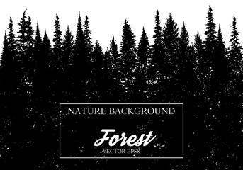 vector landscape with fir trees