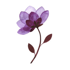 watercolor flower silhouette