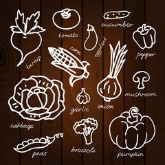 Set of vegetables vector illustration on wood background. Beautiful vector design.