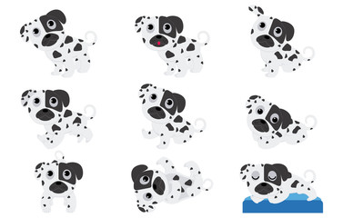 Dalmatian puppies in different poses