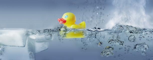 Badeente in Wasser - fest - flüssig - gasförmig