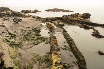 Islands Schoenheiten der Landschaft Natur, Umwelt, Tiere