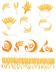 Set of spikelets of wheat. Collection of logos with wheat. Vector illustration of a plant. Logo of cereals.