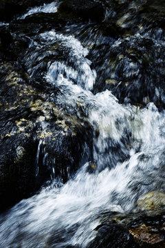detail of mountain stream