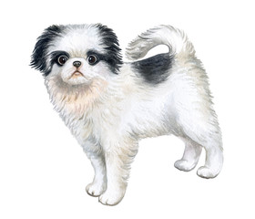 Puppy black and white isolated on white background. Nice dog. Watercolor. Illustration. Template.