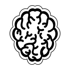 brain organ icon