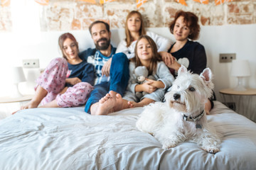 Mature couple relaxed at home in bed with their four little daughters and the Dog.