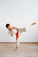 Karate boy training