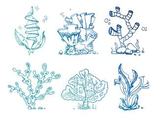 Bright doodle seaweeds underwater plants