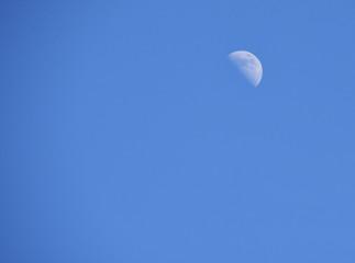 Half moon during daytime