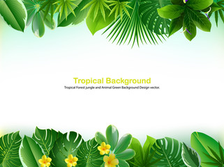 Bright tropical background with jungle plants.