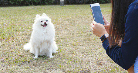 Woman using mobile phone to take photo on her dog